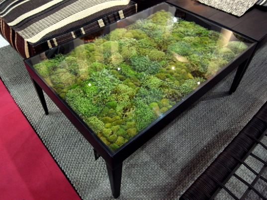 real moss tables by ayodhya